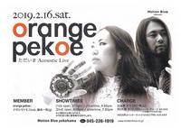 orange pekoe ただいま acoustic live